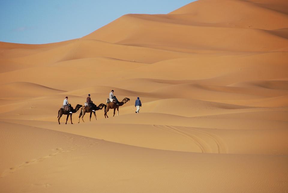 Пустыня, Песок, Дюны, Марокко, Верблюд