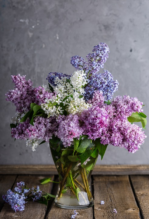 Lilac Bouquet Vase · Free photo on Pixabay