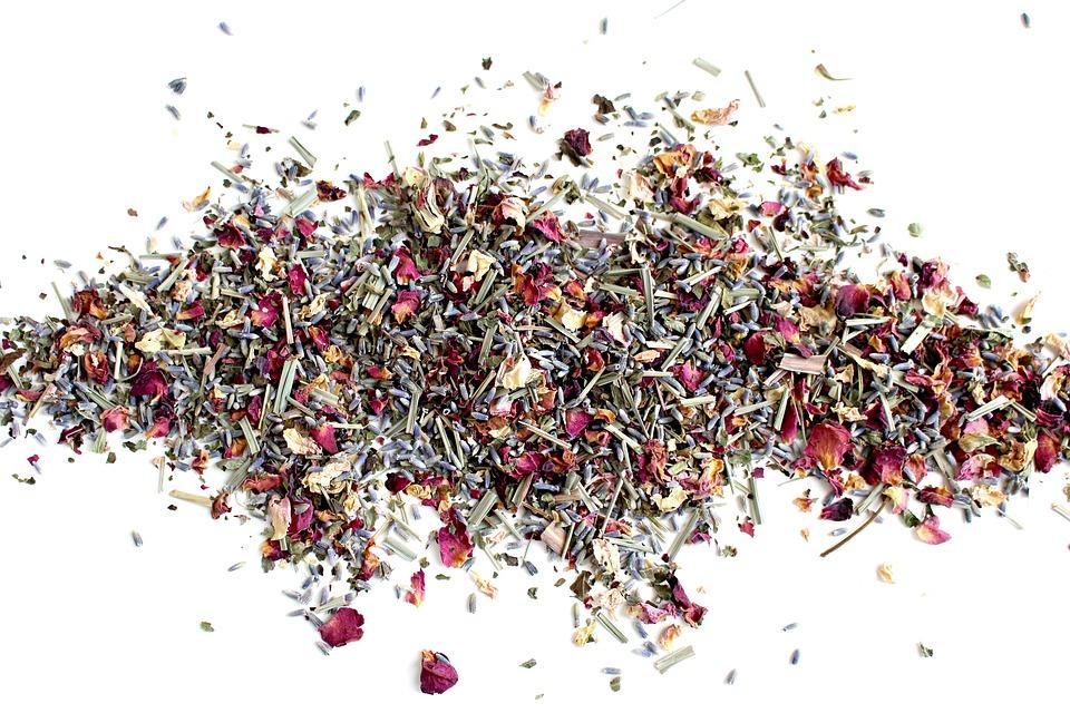 ¿Qué son las plantas medicinales?