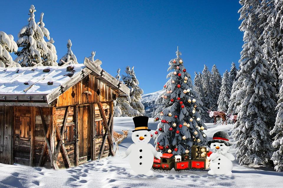 Foto Paesaggi Di Natale.Natale Paesaggio Di Umore Immagini Gratis Su Pixabay