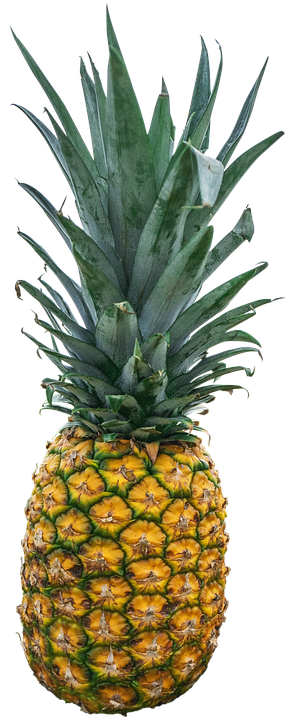 pineapple transparent background. pineapple, fruit, exotic, tropical, ripe pineapple transparent background