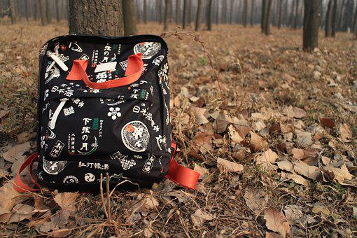 The Leaves, Backpack, Woods, Autumn