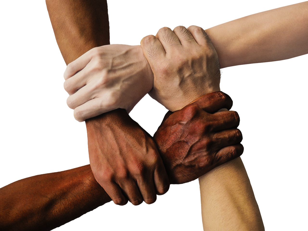 Hand, United, Together, People, Unity, Team, Teamwork