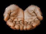 hands, palm