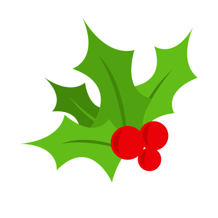 holly christmas tree berry free image on pixabay rh pixabay com mistletoe vector black and white christmas mistletoe vector