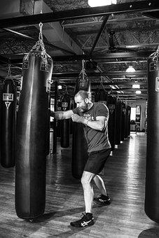 ボクサー, ボクシング, フィットネス, トレーニング, スポーツ, 戦い