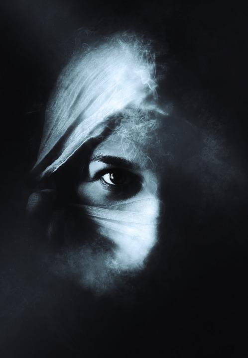Mystery Woman Silhouette Stock Vector 23255062 - Shutterstock