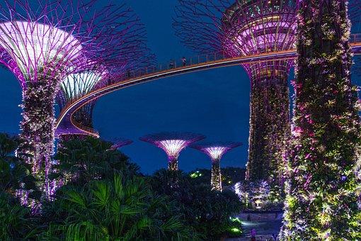 Singapore, Night, Architecture, Asia