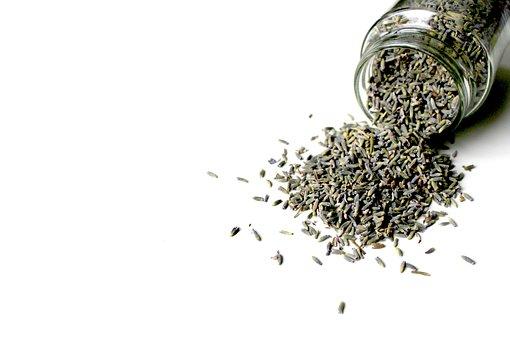 Lavender, Lavender Flowers, Dry, Violet