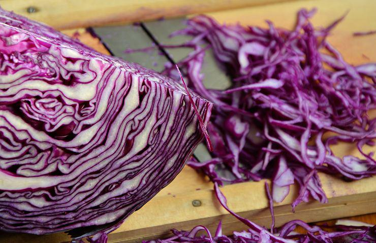 cabbage in pregnancy