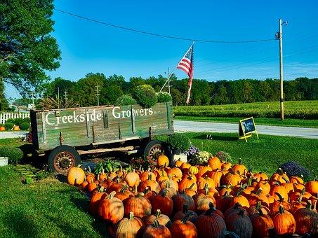Indiana, Roadside, Market, Landscape