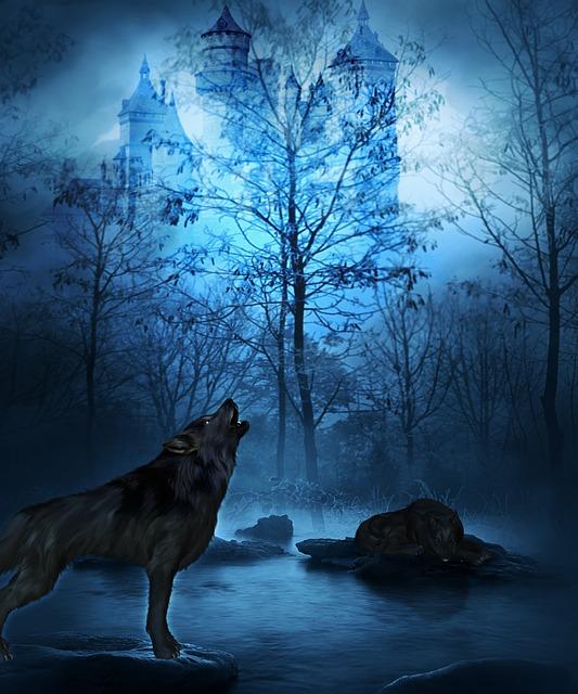 Wolf Night Forest 183 Free Image On Pixabay
