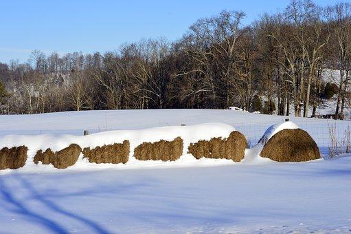 Αποτέλεσμα εικόνας για μπαλες αχυρα με χιονι