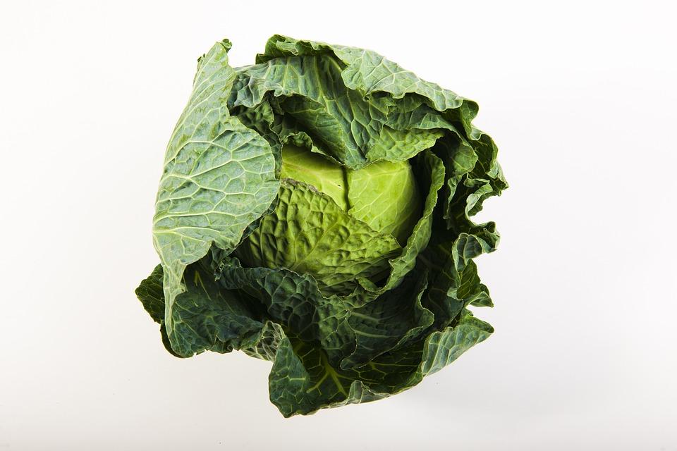 green-1939664_960_720.jpg