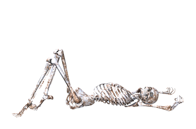 Skeleton Pose Skull Free Image On Pixabay