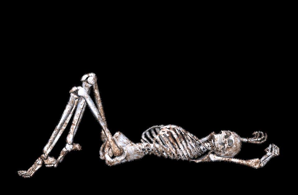 squelette pose cr u00e2ne  u00b7 image gratuite sur pixabay