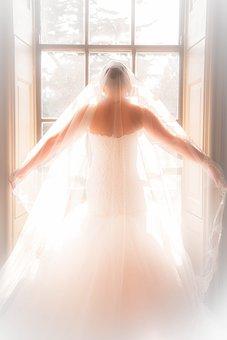 Matrimonio Immagini Pixabay Scarica Immagini Gratis