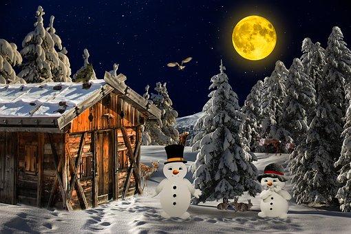 겨울, 경치, 겨울의, 나무, 감기, 눈, 눈사람, 오두막, 산악 오두막