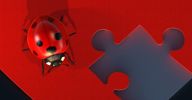 Heart Puzzle Love Luck Ladybug