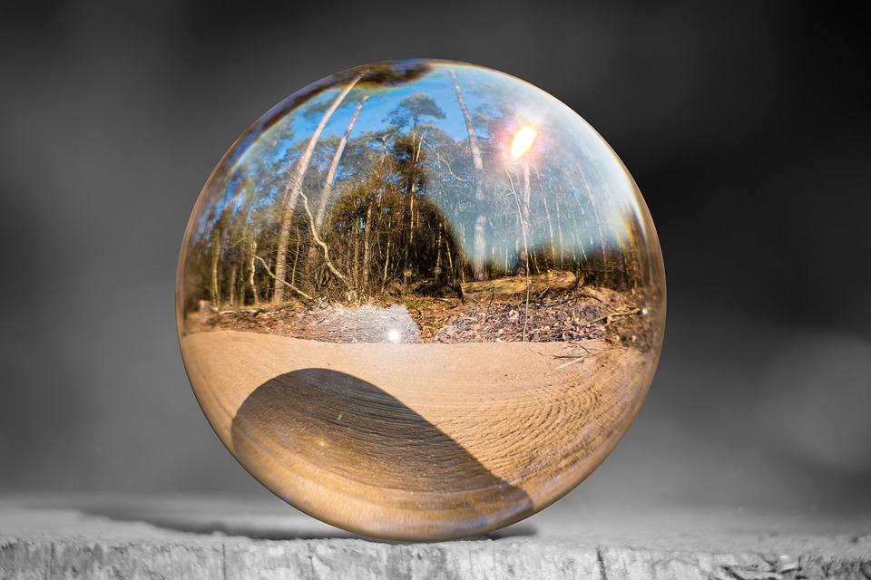 Glass Ball Tree Stump Forest 183 Free Photo On Pixabay