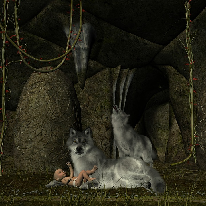 Wolf Baby Elfe Kostenloses Bild Auf Pixabay