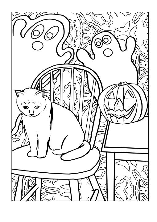 Kedi Hayalet Kabak Pixabayde ücretsiz Resim