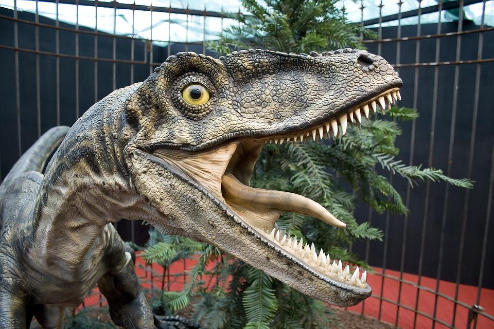 Интересные картинки динозавров