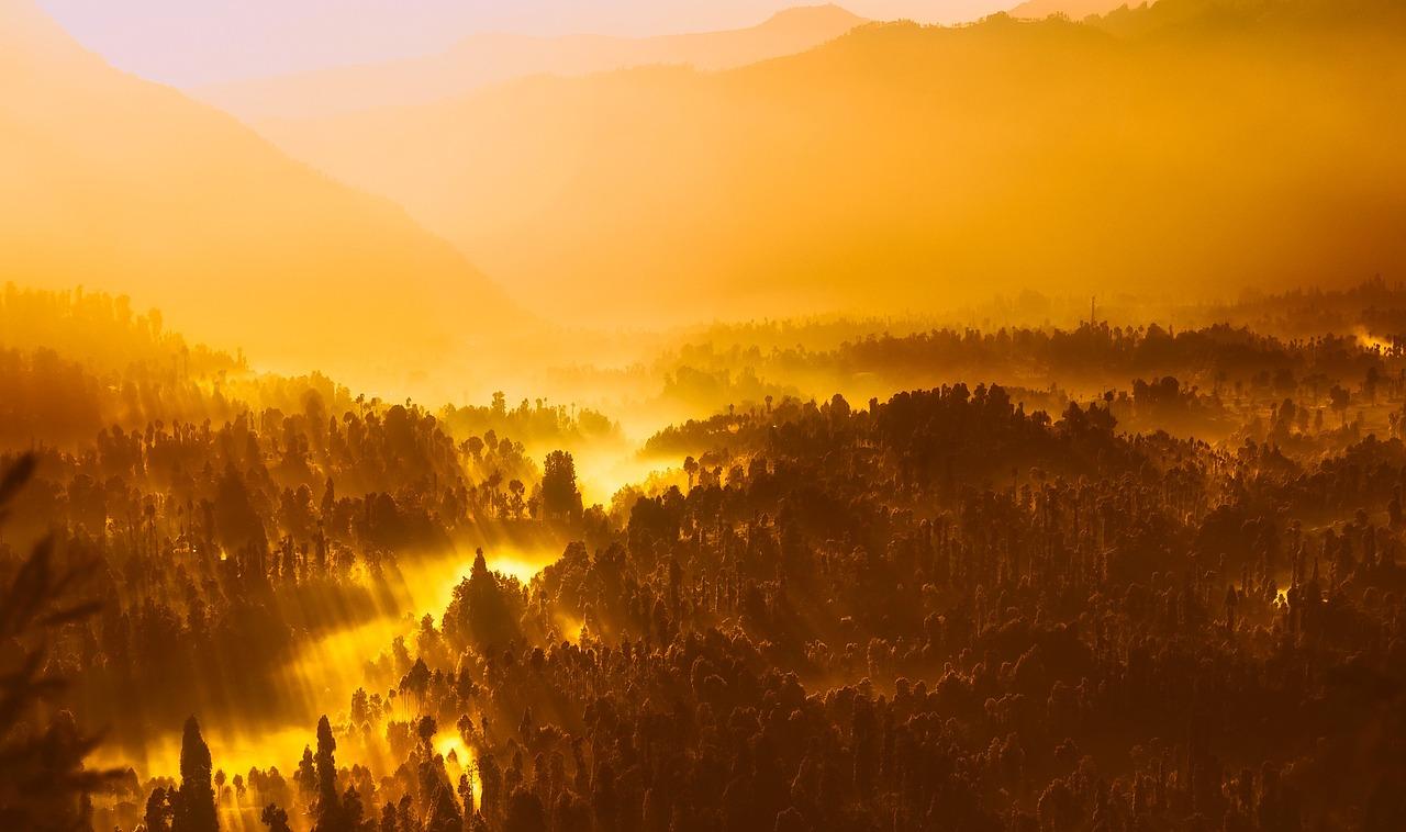 sunrise-1950873_1280.jpg