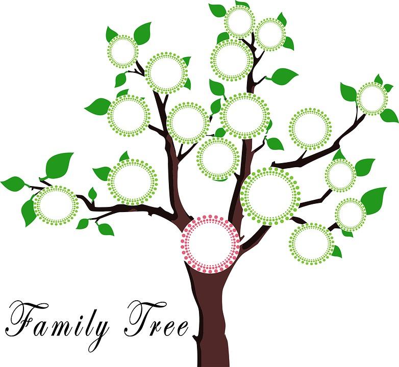 Árbol Familia La Educación · Imagen gratis en Pixabay