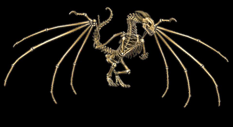 знаем, скелет дракона картинки стилей дизайнов