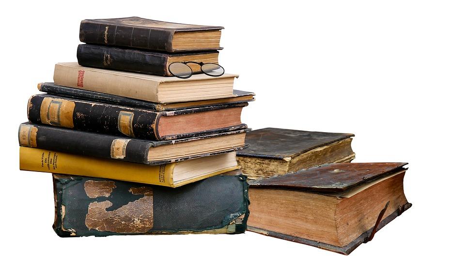 Novel study books