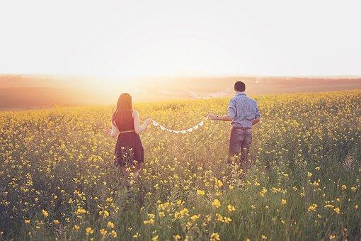 キャノーラ, カップル, フィールド, 日没, 恋愛中です, 徒歩, 夢のような