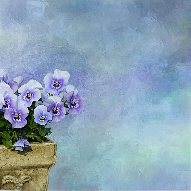 Pansy Plant Flowerpot 183 Free Photo On Pixabay