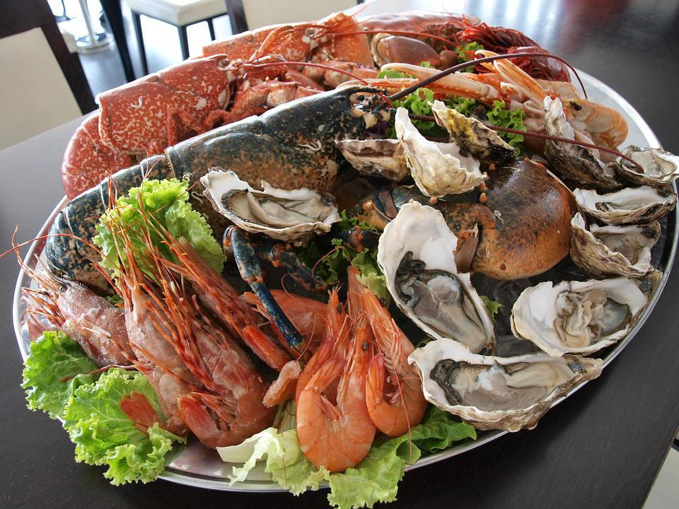 Free photo oysters prawns clams crab fish free for Authentic portuguese cuisine