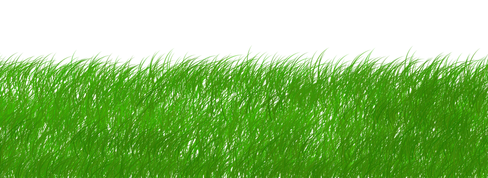 Pubg Png Background Hd Download: Illustration Gratuite: Vert, Écologie, Écho