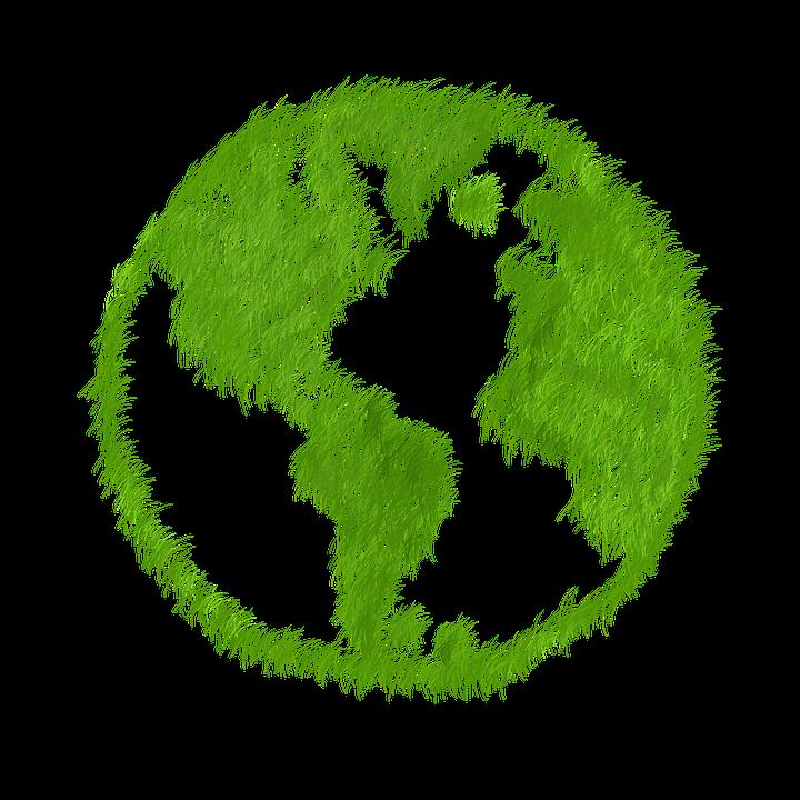 Green, Gras, Prato, Echo, Ökologisch, Natur, Sparen