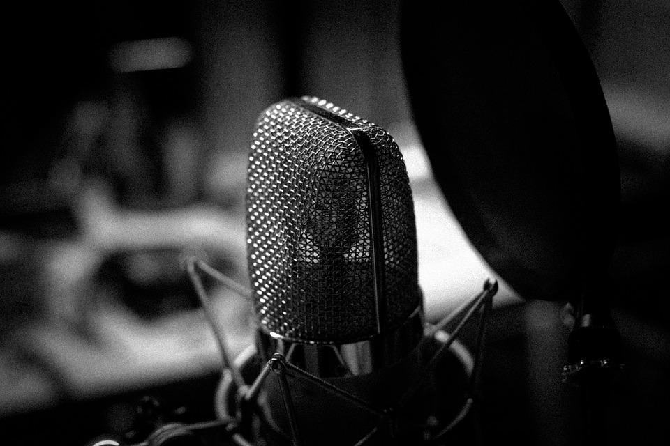 Music microphone black and white
