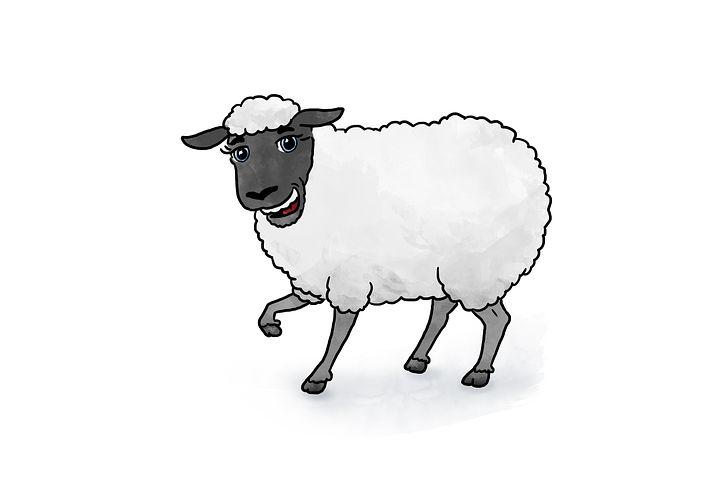 Картинки овечек нарисованные