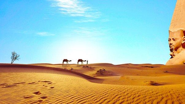 Egypt, Sahara, Desert, Dry, Camels