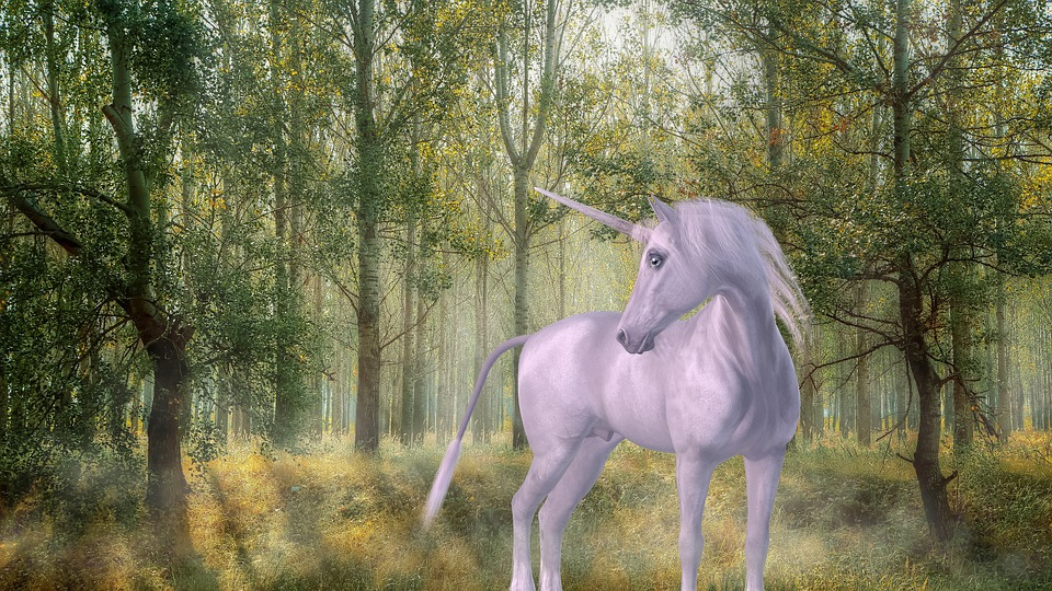 Unicorn, Forest, Fairy Tales, Mystical