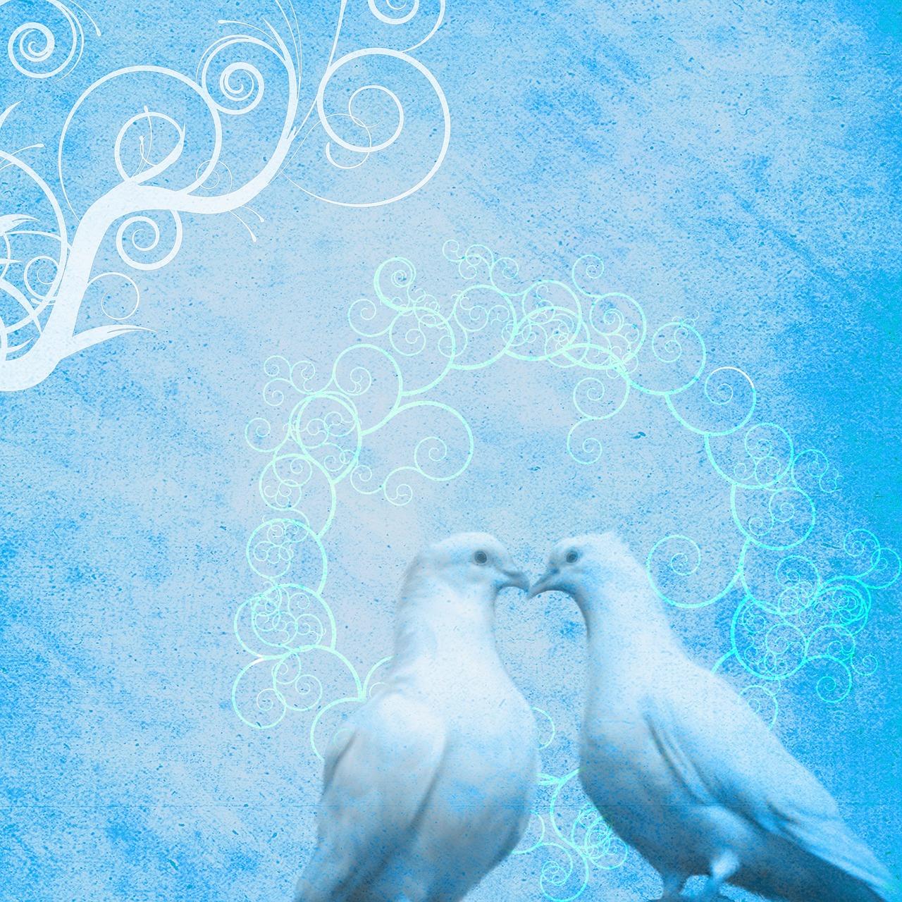 Картинки свадебные фоны с голубями