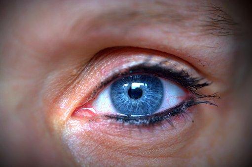 Eye, Human Eye, Blue, Eyelashes
