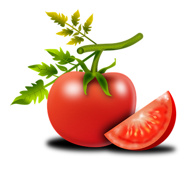 tomato-1987357__340.png