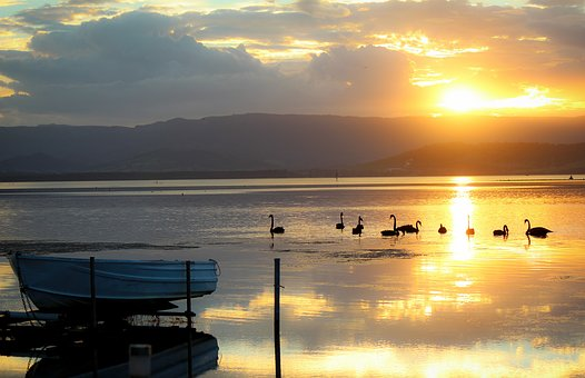 Boat, Lakeillawarra, Swan, Sunset, Relax Top 10 Cities to Live in Australia in 2020