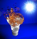 lamp, light, bulb