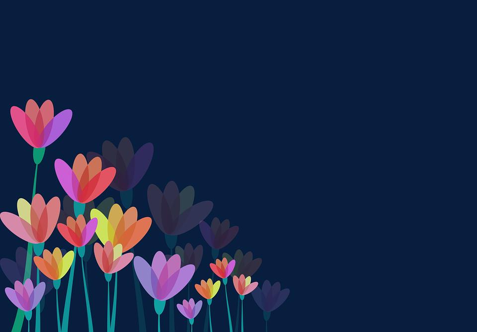 Fiori Floreale Fiorito Immagini Gratis Su Pixabay