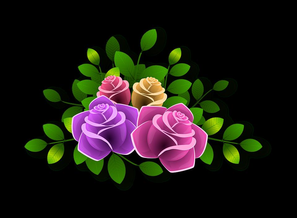 장미 꽃 화려한 · Pixabay의 무료 이미지
