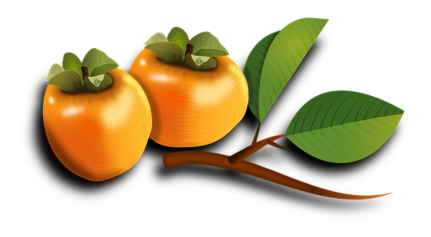 Persimmon images pixabay download free pictures for Cachi persimon