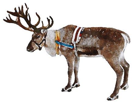 Reindeer Christmas Watercolor Animal Oekak
