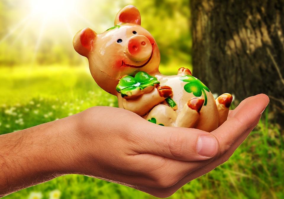 Viel Glück, Handvoll Glück, Schweinchen